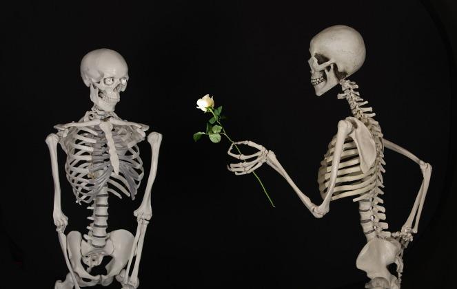 skeletal-601213_1920